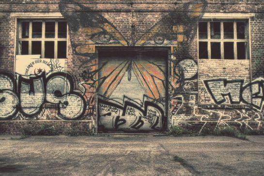 wall butterfly!!1