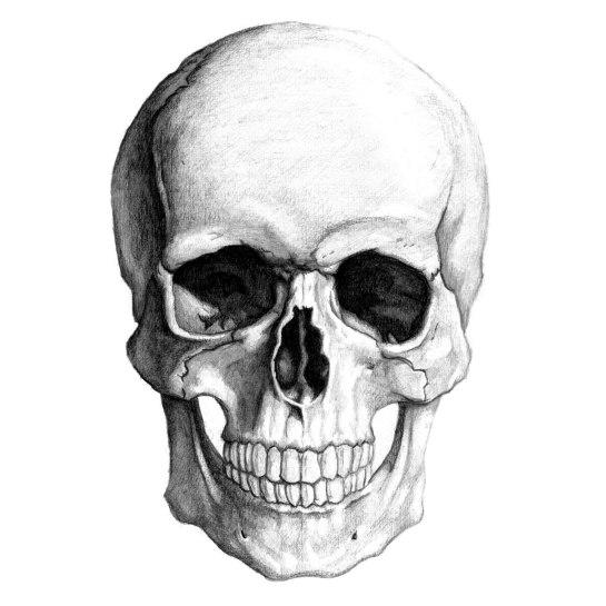 skullpencil_large