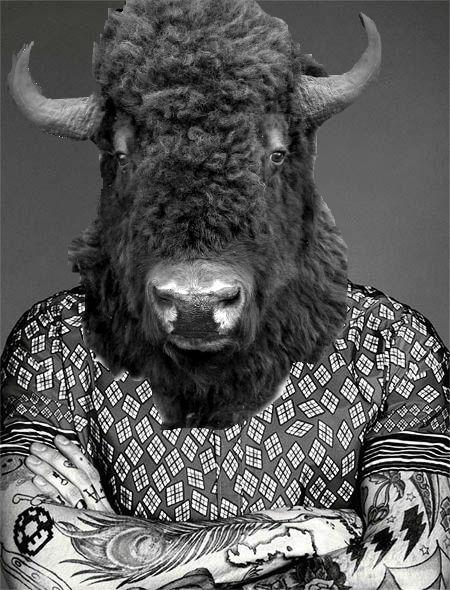 buffalo head.jpg