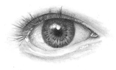 Auge-Realismus-bekommen.jpg