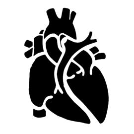 Anatomical-Heart-Stencil-thumb.jpg